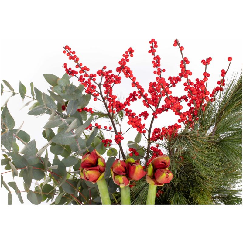 De Gier bloemen kerst 0067 scaled 1