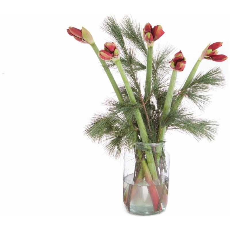 De Gier bloemen kerst 2 scaled 1