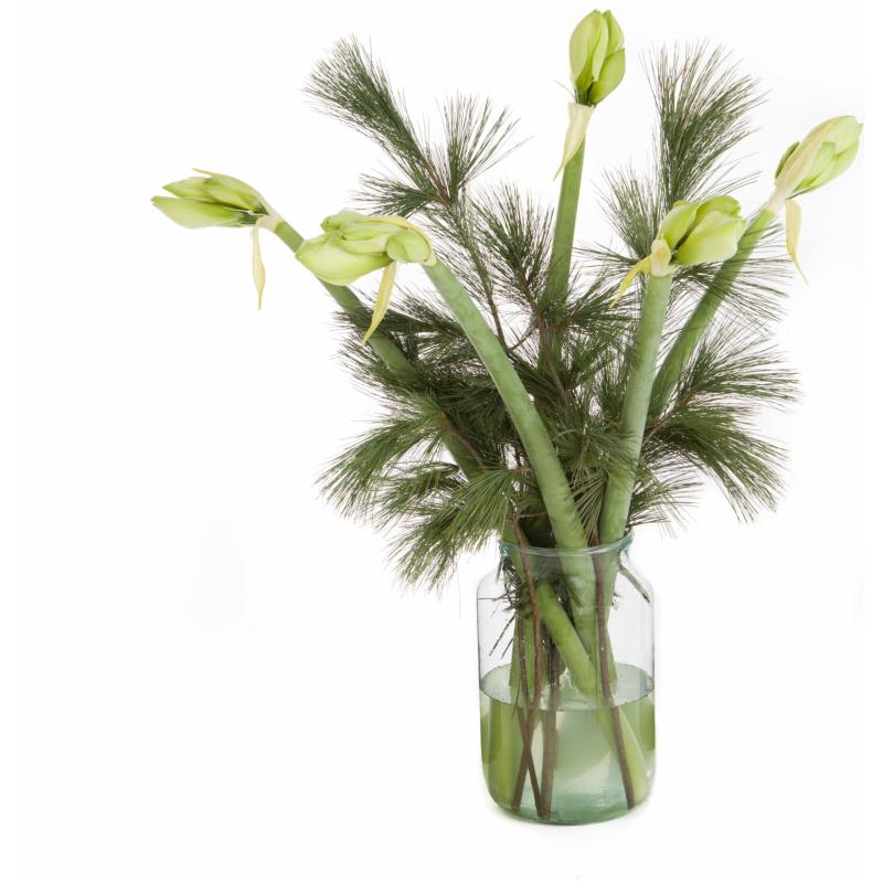De Gier bloemen kerst 3 scaled 1