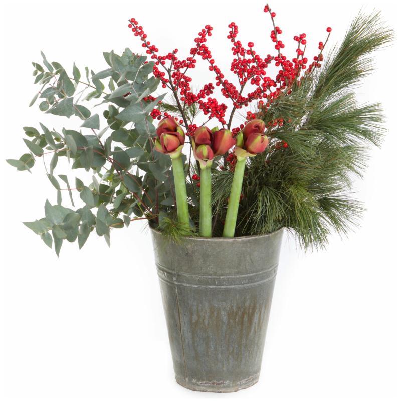 De Gier bloemen kerst 3359 scaled 1