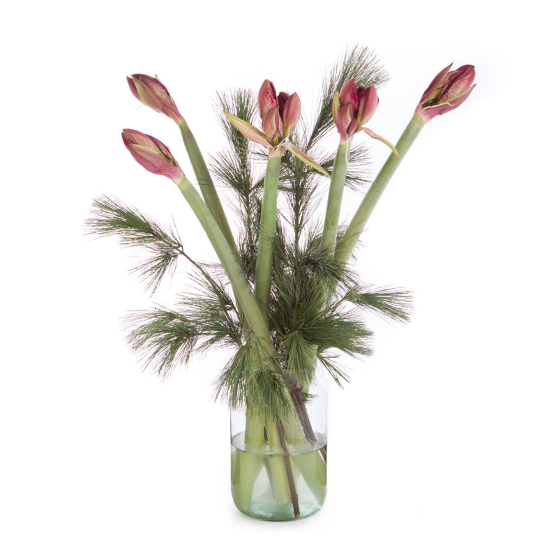 De Gier bloemen kerst 4 scaled 1