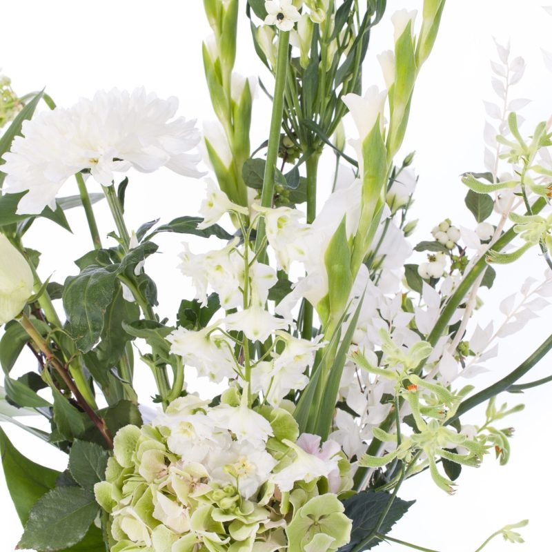 De Gier bloemen webshop 1808 scaled 1
