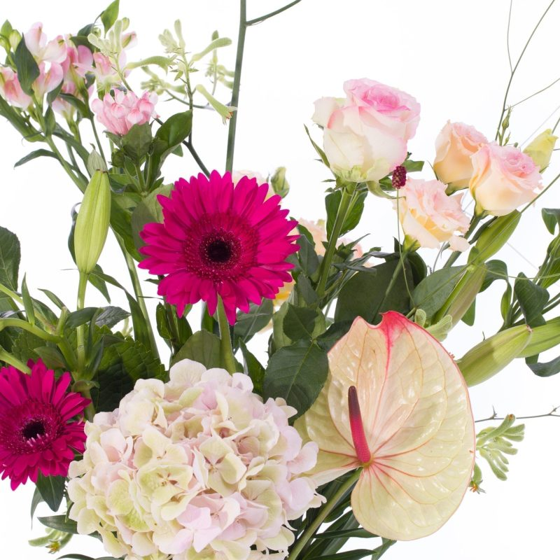 De Gier bloemen webshop 1809 scaled 1