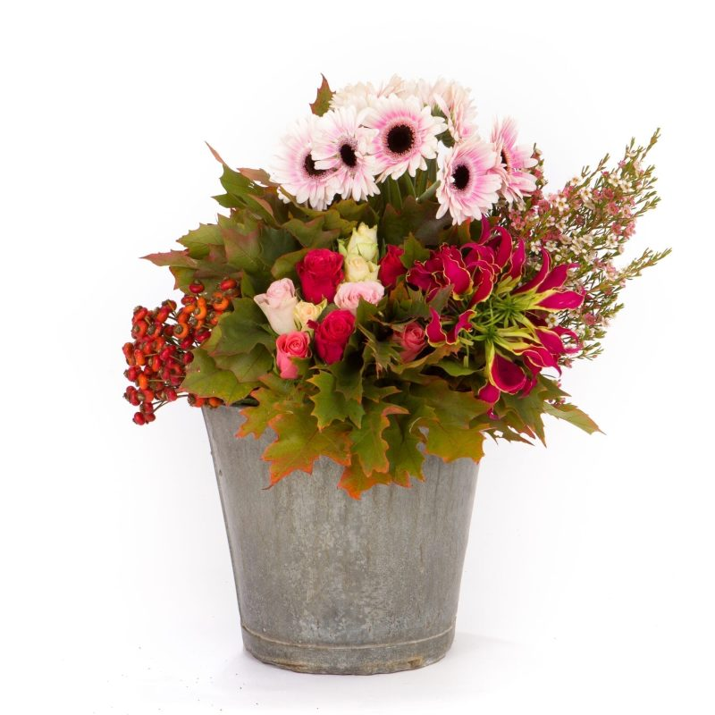 De Gier bloemen webshop 2622 scaled 1