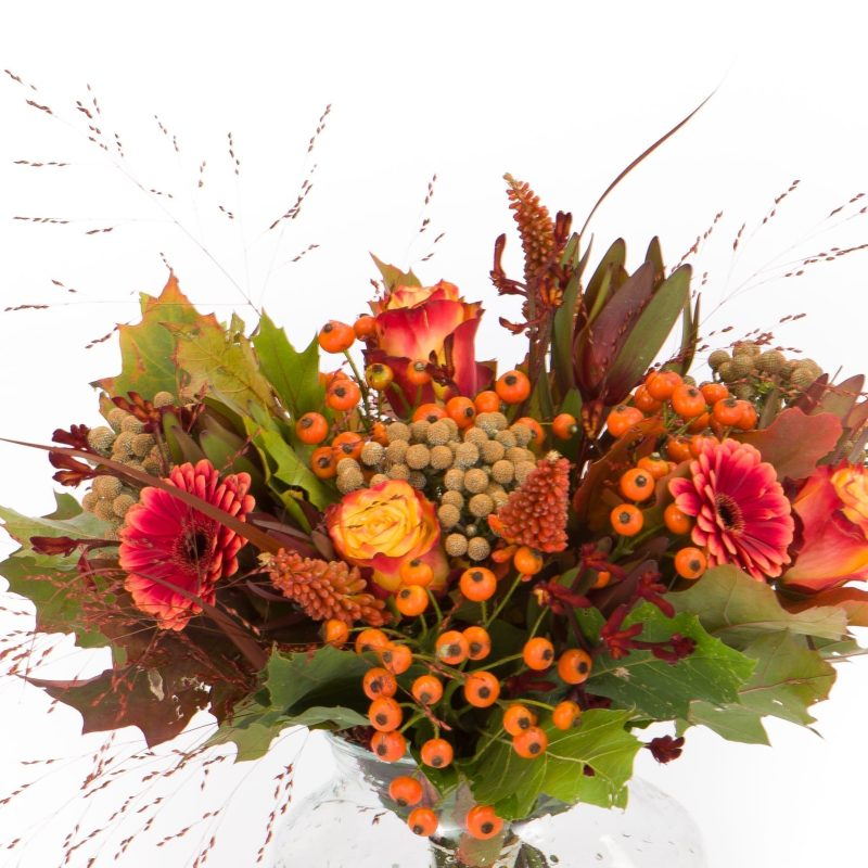 De Gier bloemen webshop 2649 2