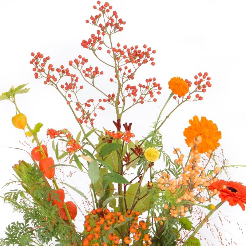 De Gier bloemen webshop 2656 scaled 1