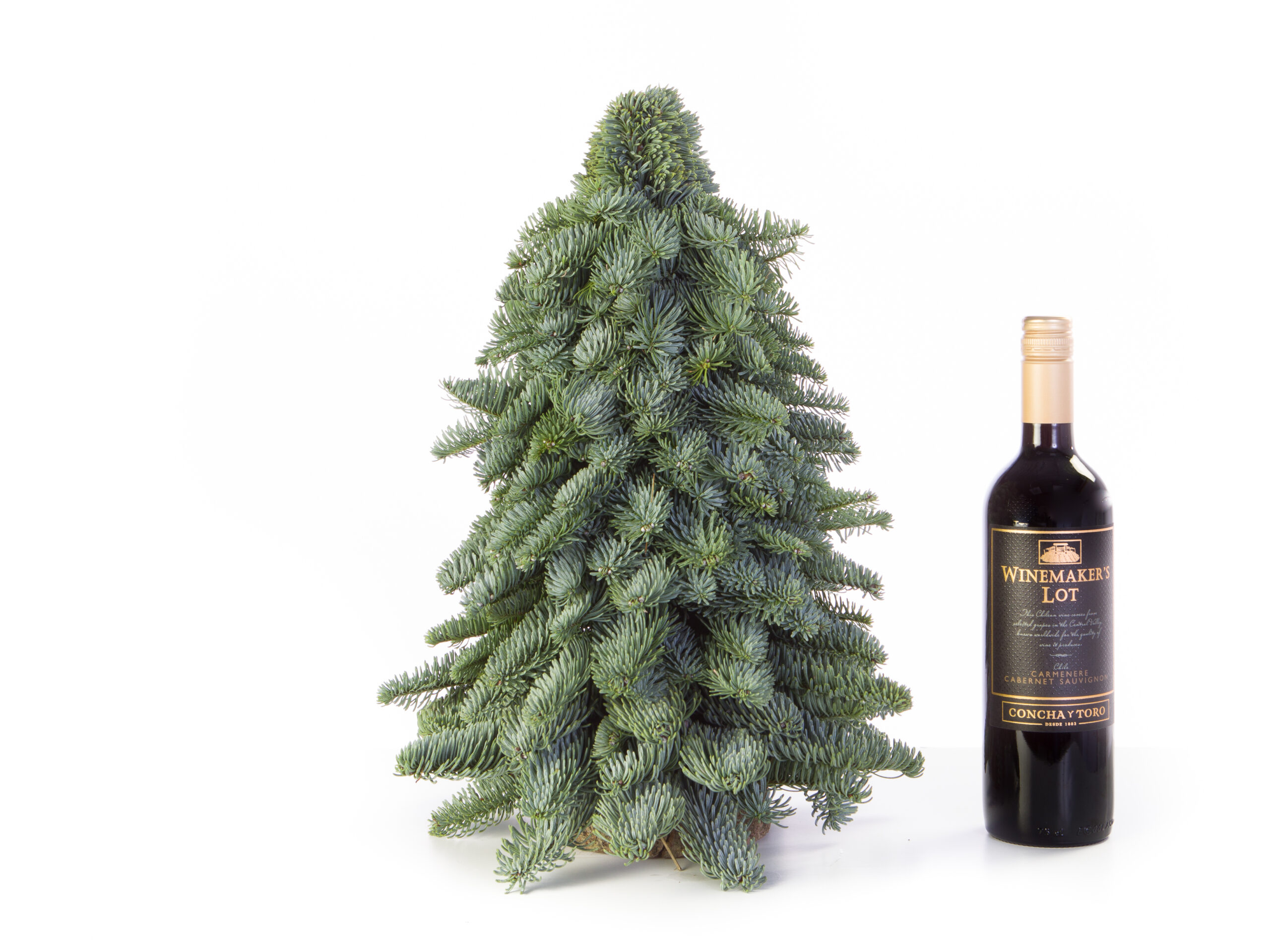 Klein kerstboompje kopen