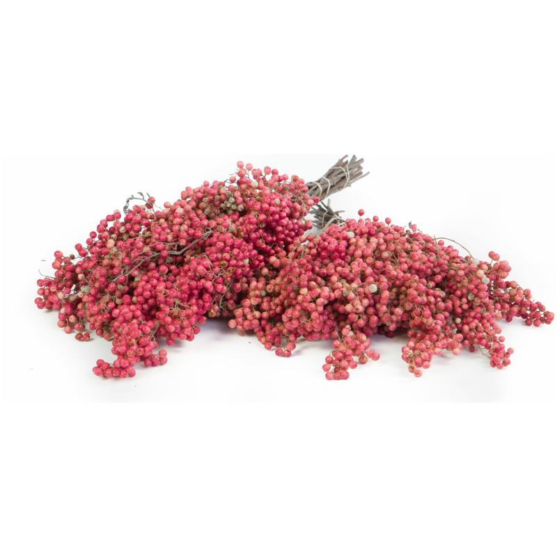 De Gier bloemen webshop 2967 scaled 1