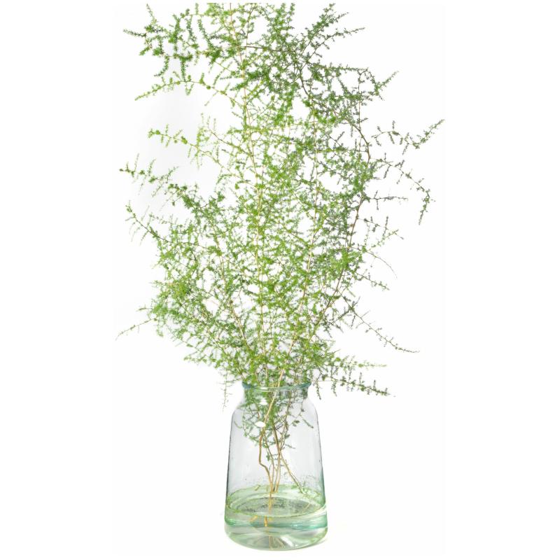 De Gier bloemen webshop 4 scaled 1