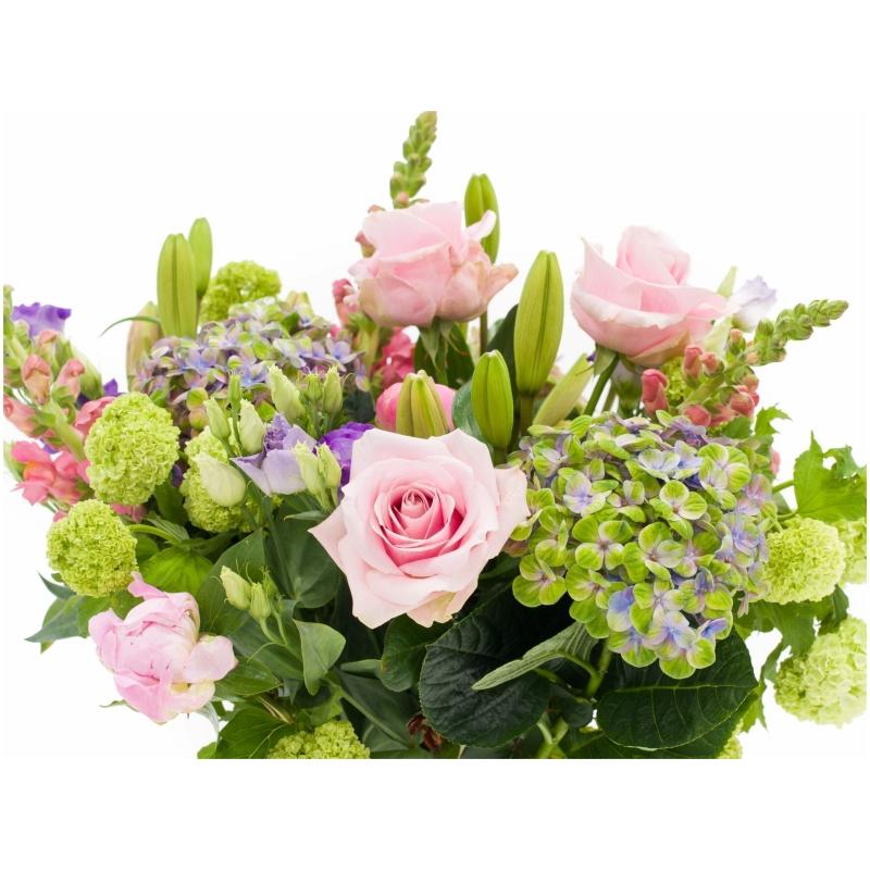 De Gier bloemen webshop 7067 scaled 1