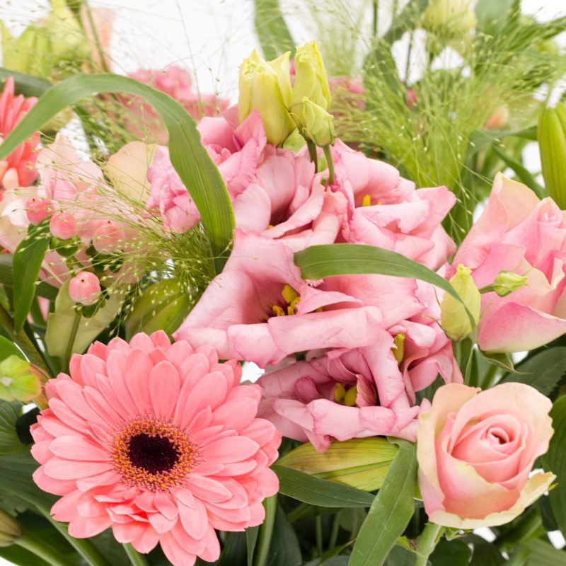 De Gier bloemen webshop 7697 scaled 1