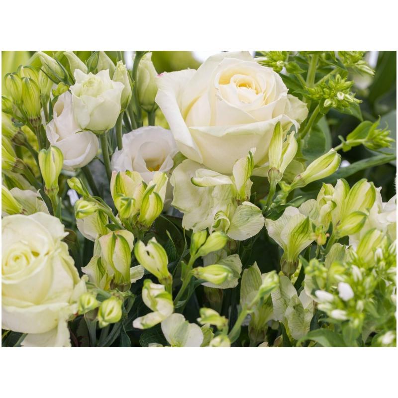 De Gier bloemen webshop 7700 scaled 1