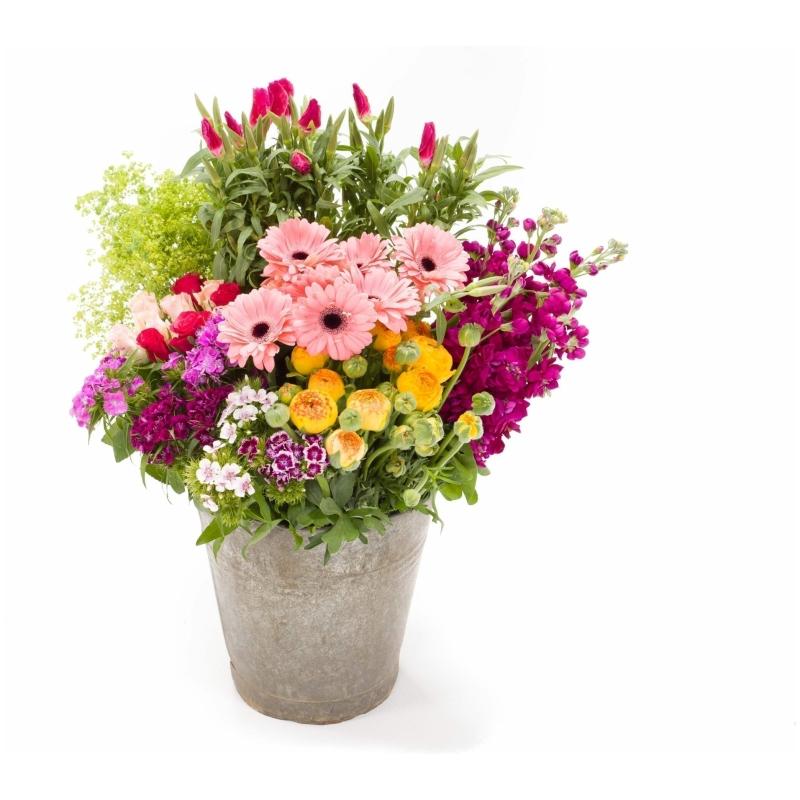De Gier bloemen webshop 7960 1 scaled 1