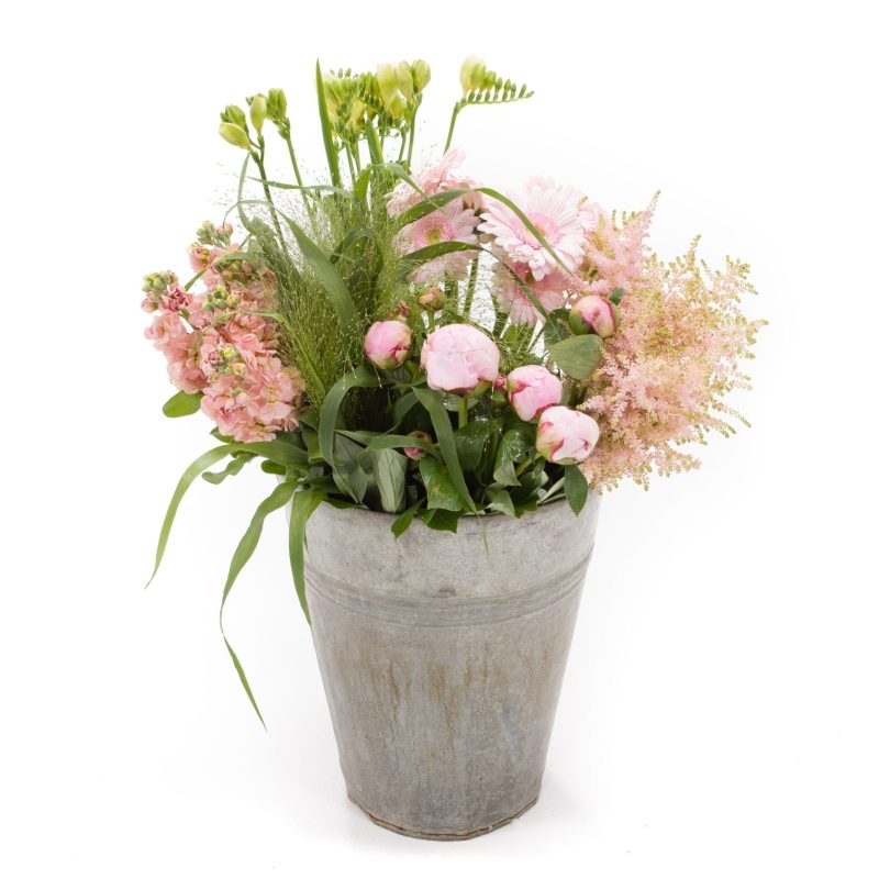 De Gier bloemen webshop 7964 1 scaled 1