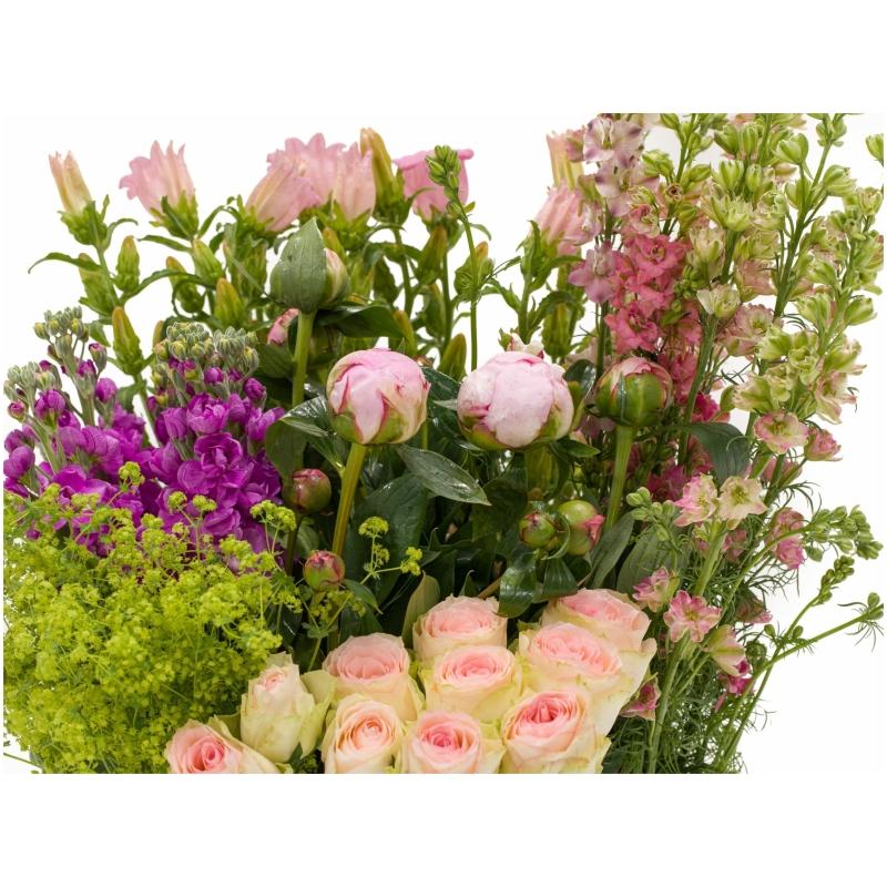 De Gier bloemen webshop 7974 1 scaled 1