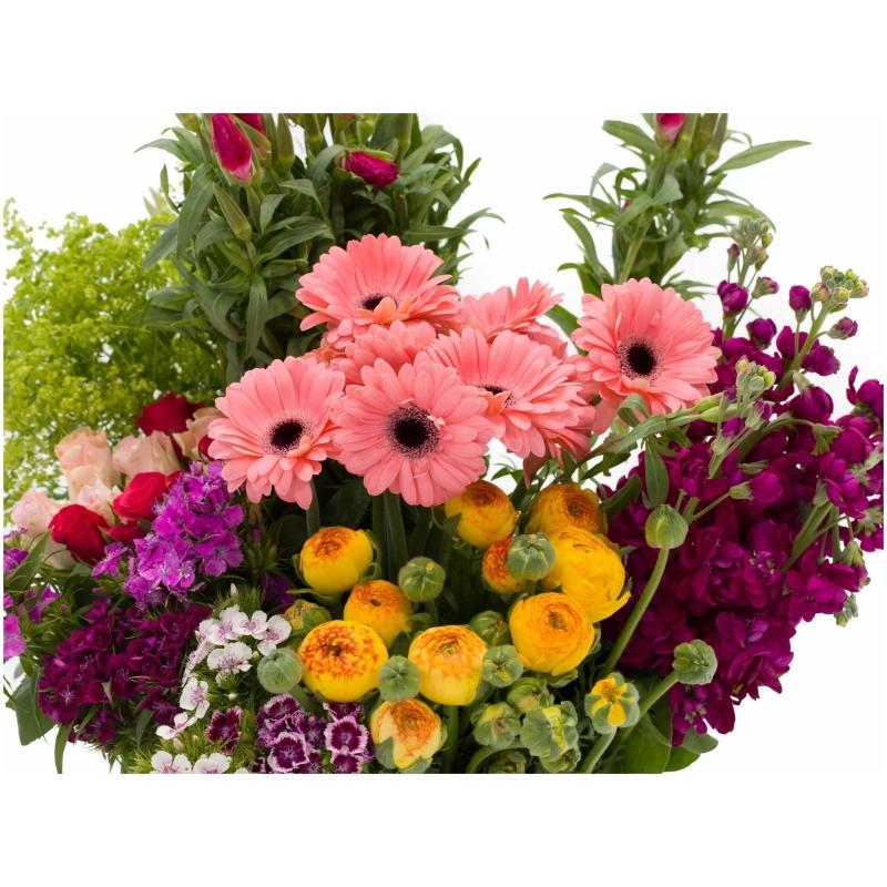 De Gier bloemen webshop 7980 1 scaled 1