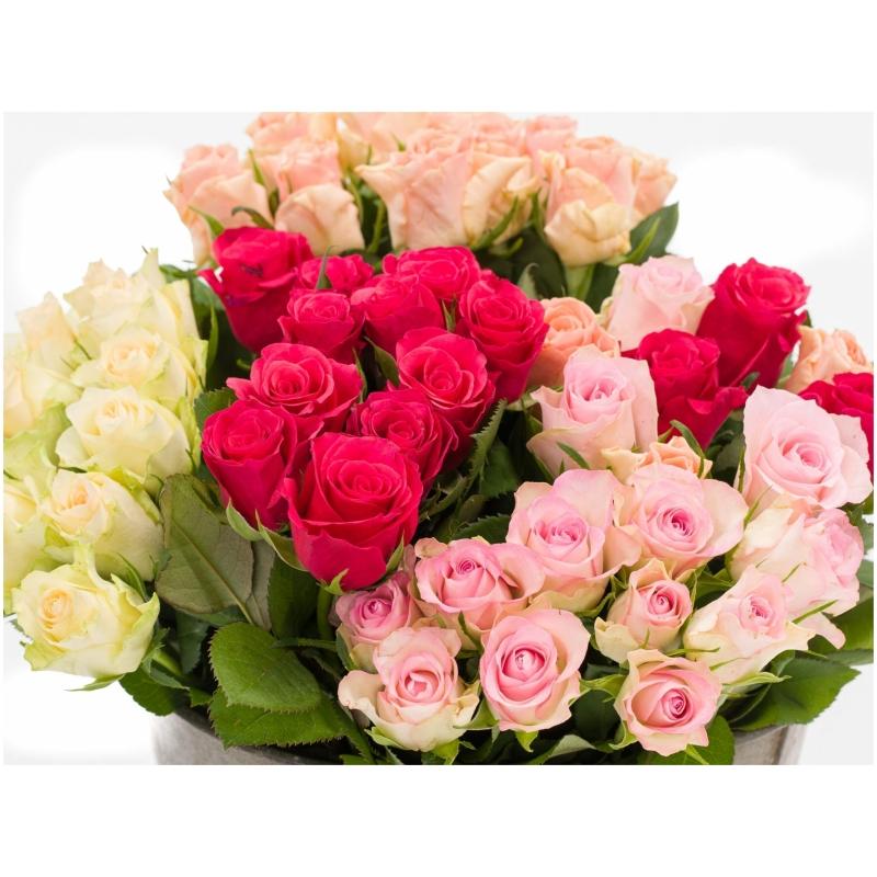De Gier bloemen webshop 8158 1 scaled 1