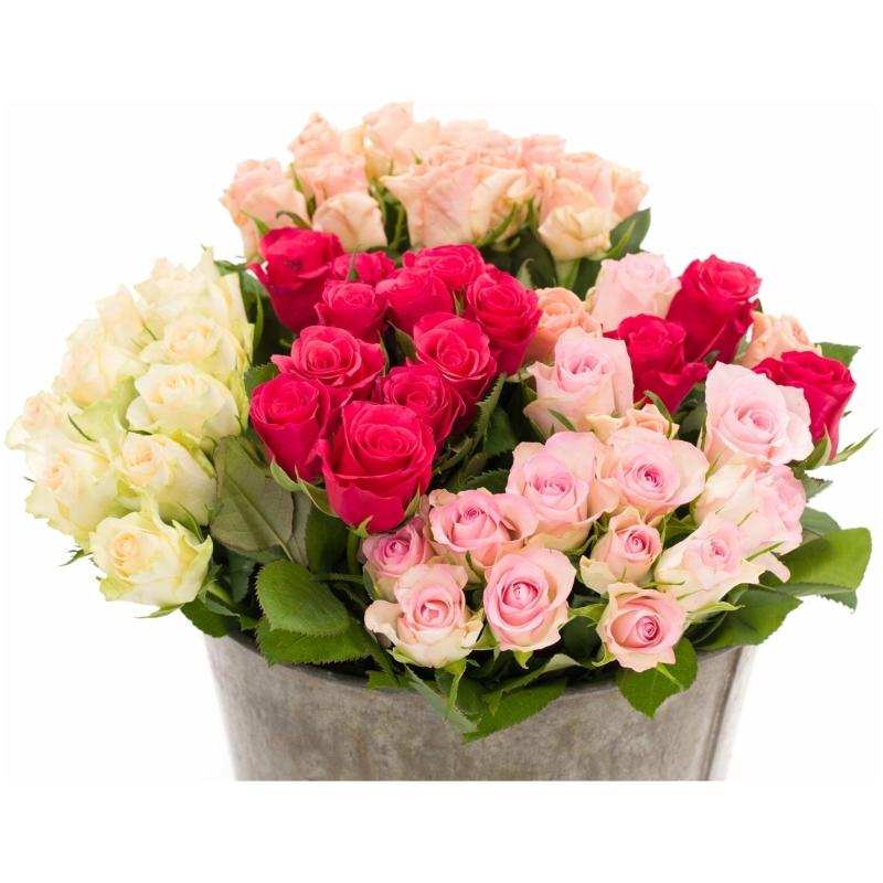 De Gier bloemen webshop 8162 1 scaled 1