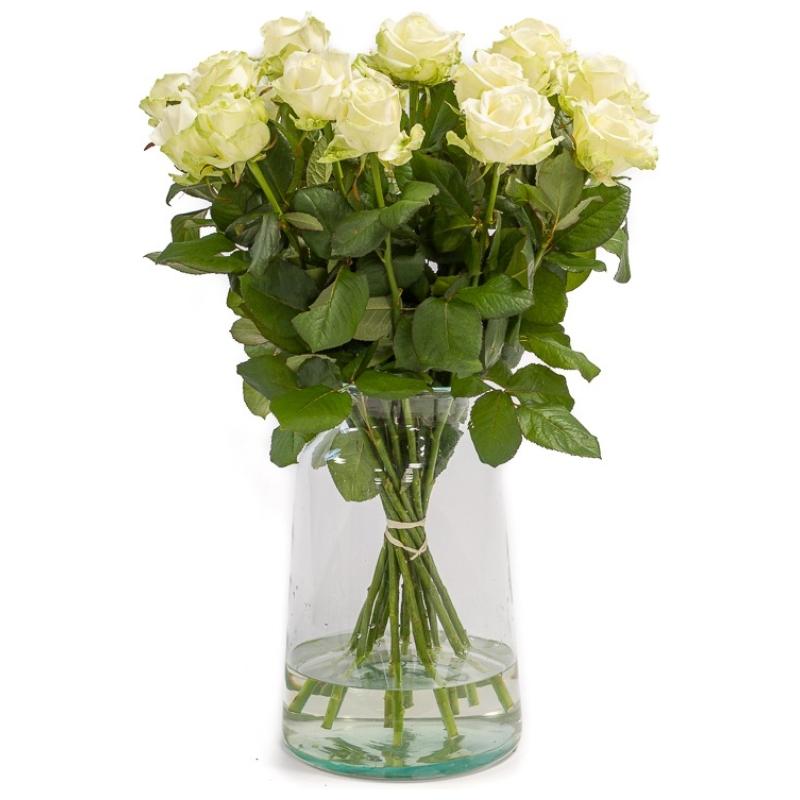 Witte rozen 1