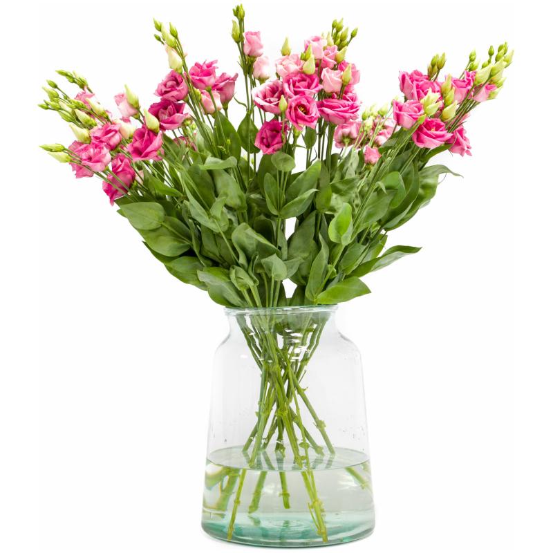 Roze lisianthus kopen