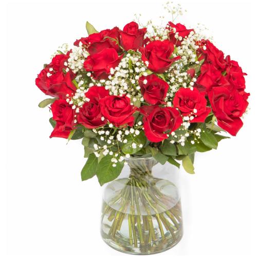 Rode rozen met gipskruid
